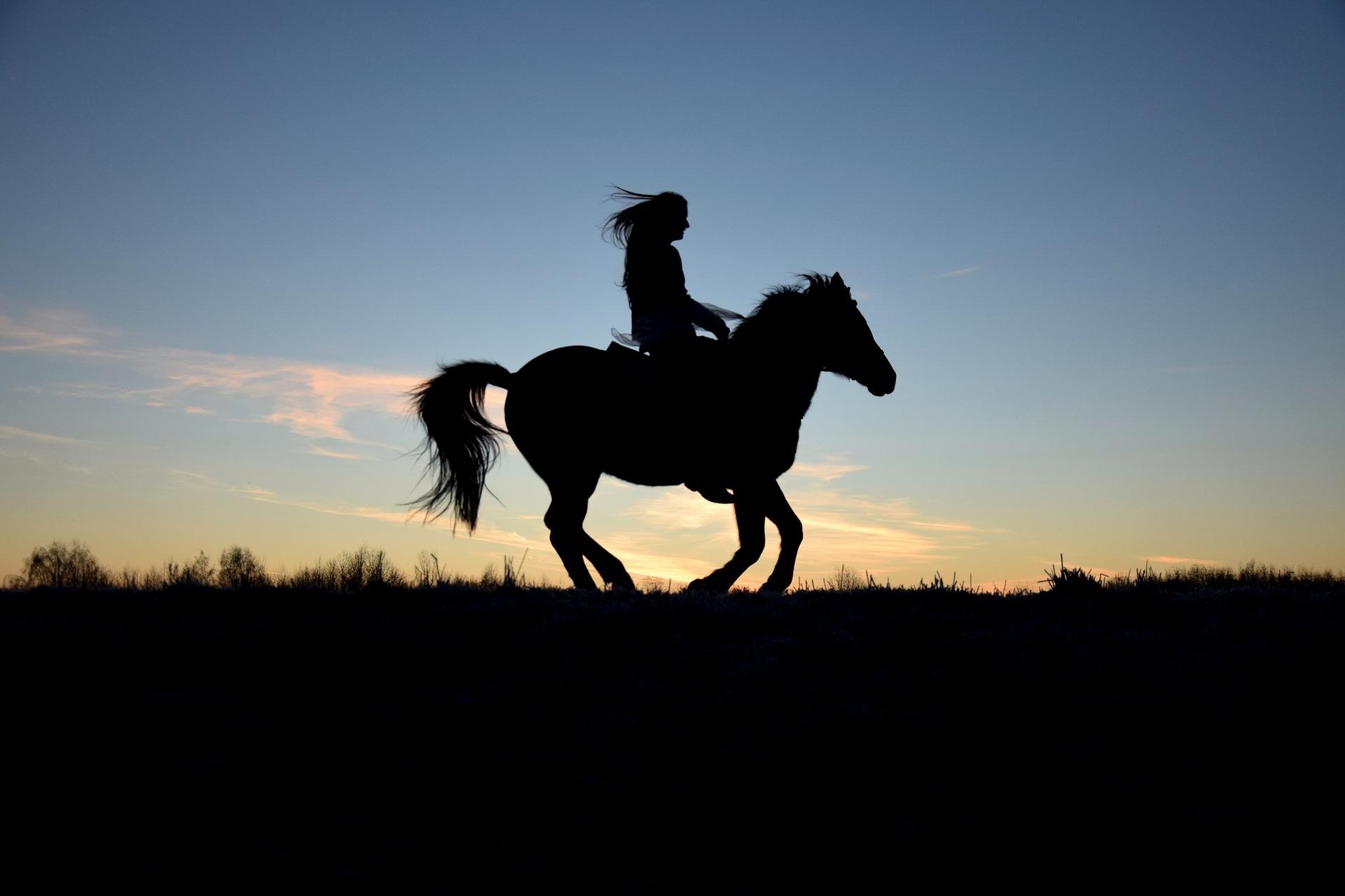 Leo Forsbeck - Die Versicherungs-Experten | Freizeitsportler wie Reiter sind besonders unfallgefährdet