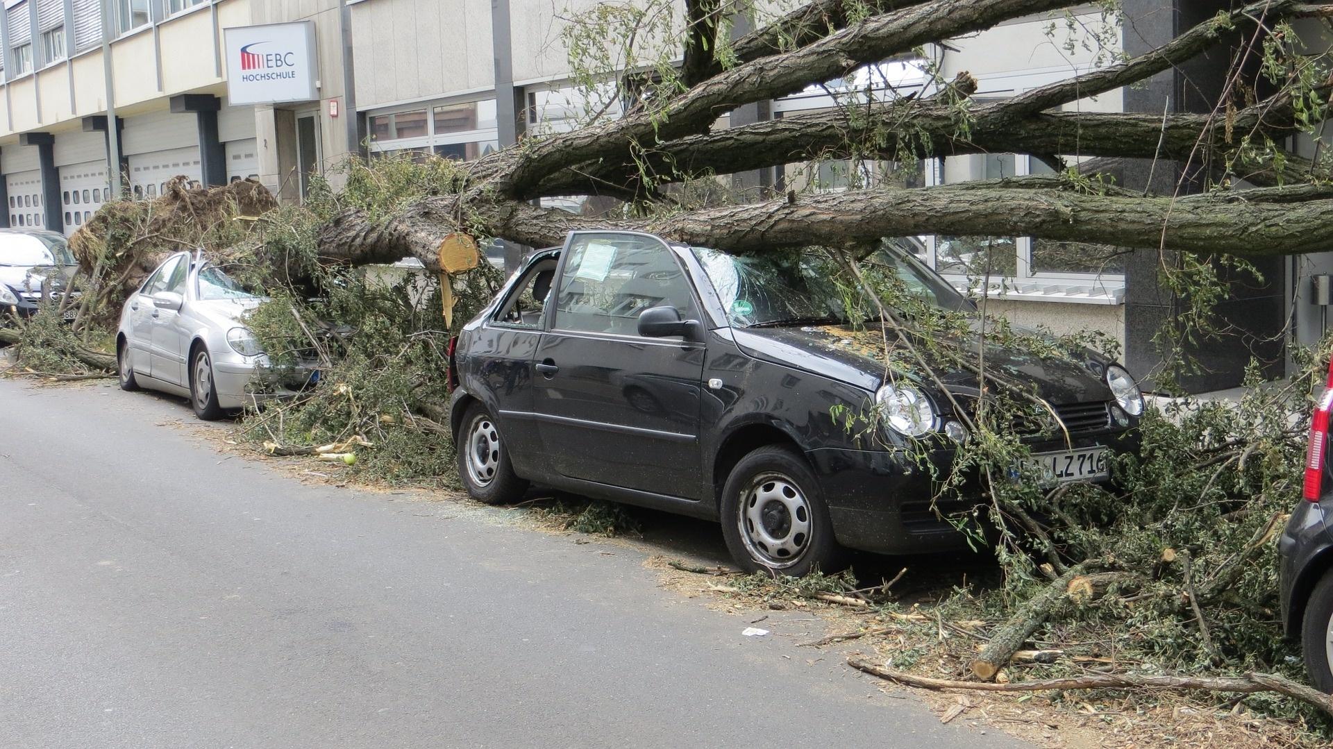 Dein Auto ist nach dem Sturm beschädigt?